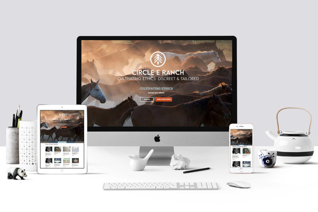 Circle E Ranch homepage mockup