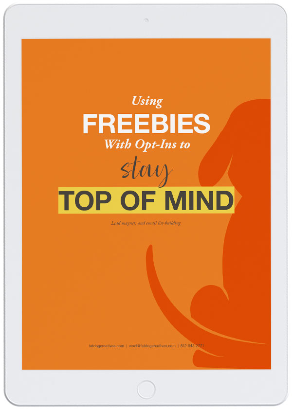 iPad image of PDF cover for Using Freebies With Opt-Ins to Stay Top of Mind
