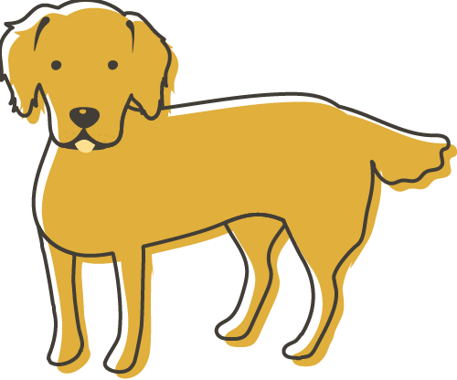 Illustration of a Golden Retriever